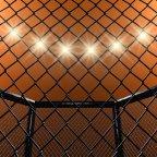 Discount UFC 222: Max Holloway vs. Frankie Edgar Tickets in Las Vegas